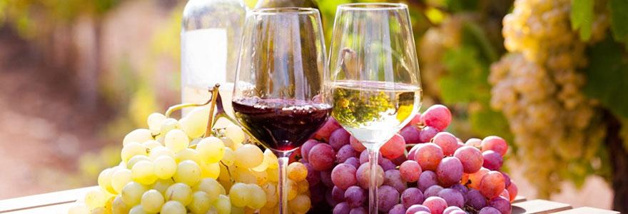 Le tourisme viticole